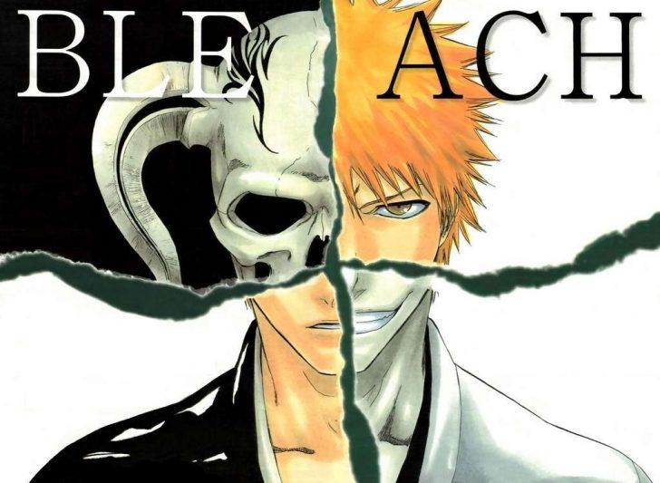 Covers-bleach-manga-and-tv-13909687-1025-750