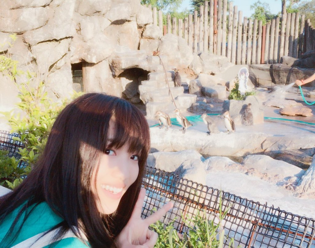 Hululu's Seiyuu just visited Grape-kun, the penguin who fell in love with his Kemono Friends counterpart