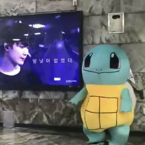 Popular K-pop idol cosplays as Squirtle to personally see fans' birthday greetings