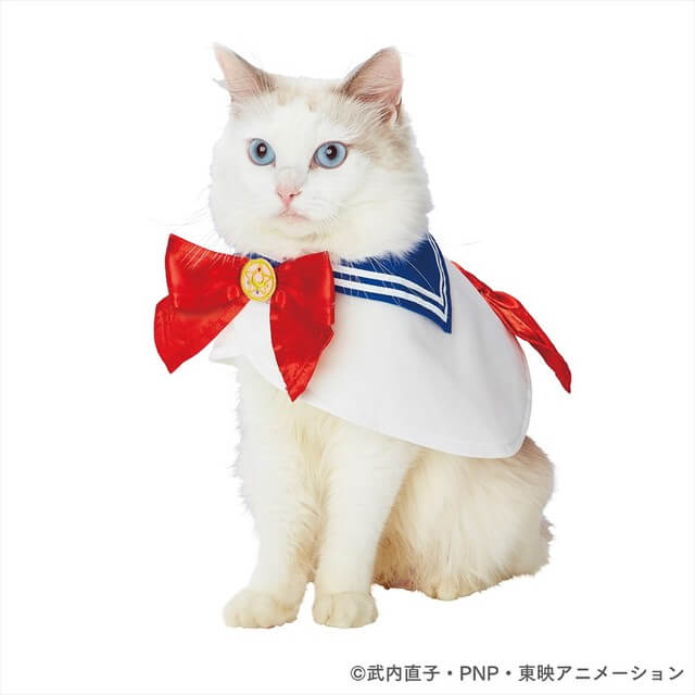 Make your cats or dogs cosplay with official Dragon Ball and Sailor Moon pet costumes