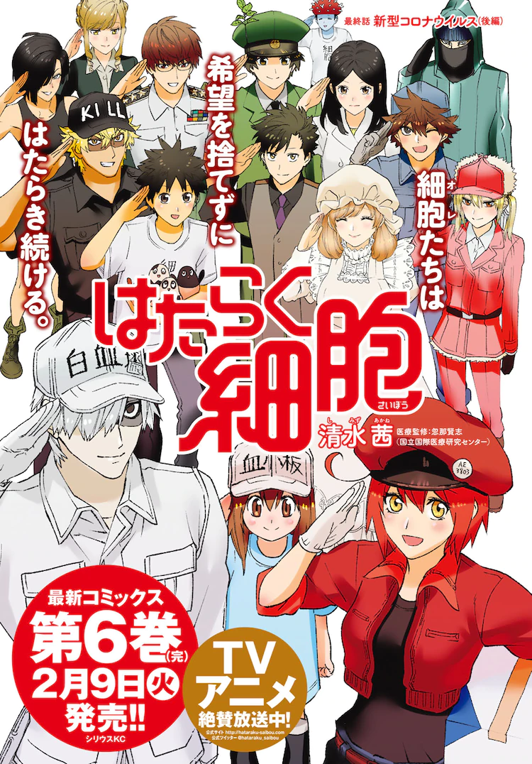 """Cells at Work!"" Ends Serialisation Today, Multiple Spin-offs Announced!"
