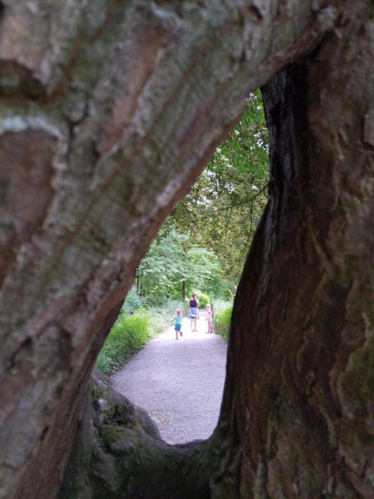 Cache-cache dans les Jardins d'Annevoie