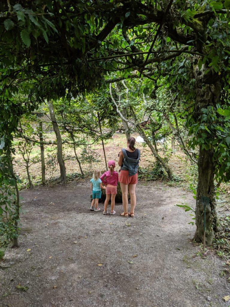 Petit défi dans les Jardins d'Annevoie