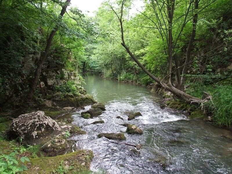 Lepterija-Sokobanja-reka-Moravica