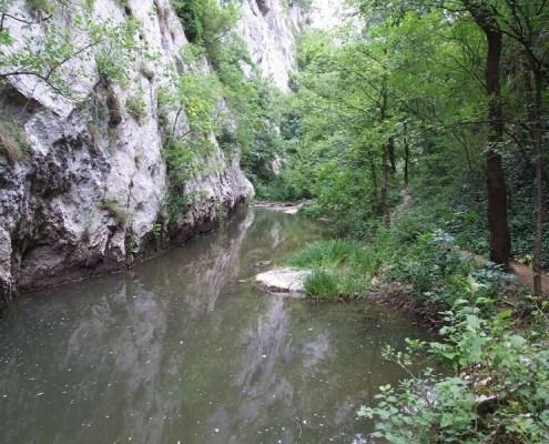 Lepterija-Sokobanja-kanjon-reka-Moravica