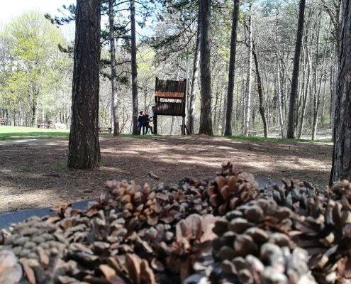 Sokobanja park Borići