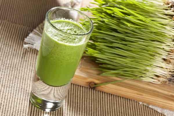 sok z trawy pszenicznej