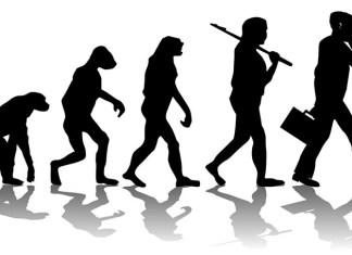 Креационист из США: теория эволюции противоречит Библии