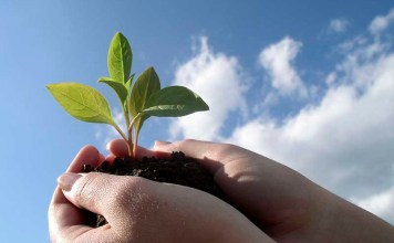 Человек и природа. Забота об окружающей среде