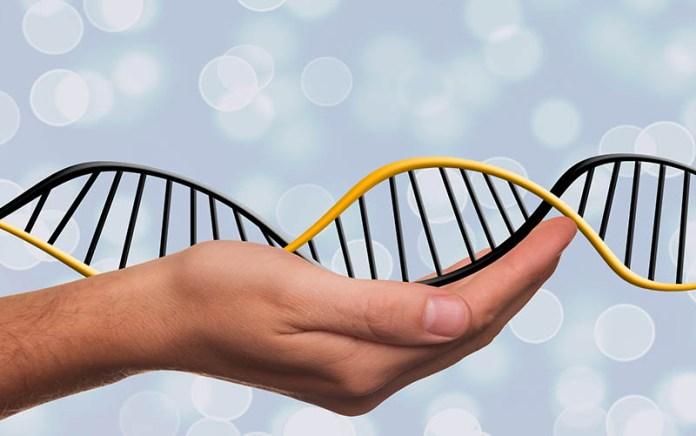 Творение, эволюция и современная наука