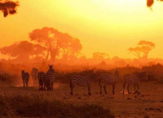 Адвентисты в Кении празднуют субботнюю победу
