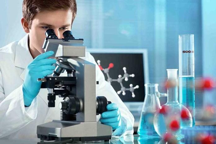 Анализ ДНК позволил найти потомков библейского народа