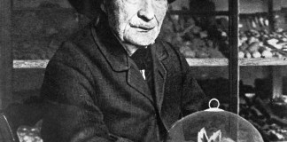 Жан Анри Фабр: отец современно энтомологии, антиэволюционист