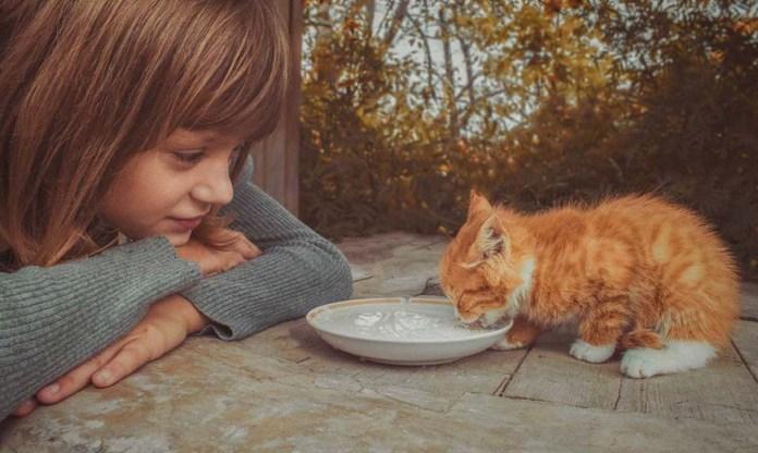 Что такое доброта?