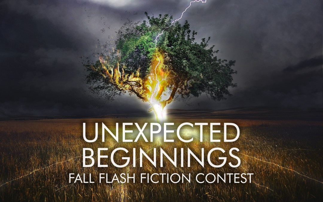 Unexpected Beginnings Flash Fiction Contest