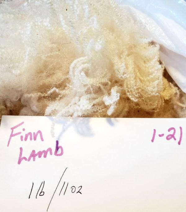 1-21 White Lamb Fleece
