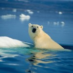 G7でまた恥?弱気な日本の温暖化ガス排出量削減目標