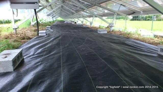 南側ソーラーパネルアレイ下の防草シート敷設作業がほぼ終了