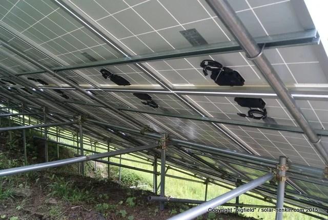 ソーラーパネルの設置が完了した単管パイプ架台(裏側)