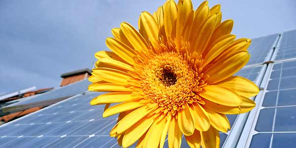 Solar-Panel-Install