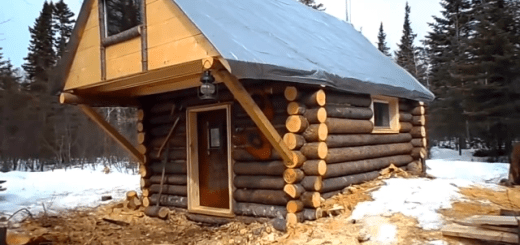 Build a cabin for under $500