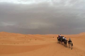 Erg Chebbi Camel Tour