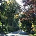 Old Boston Post Road