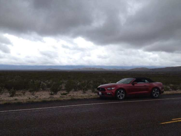 The Mustang on the roadside