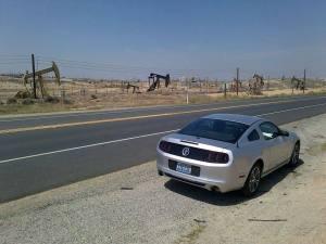 Alamo Mustang California