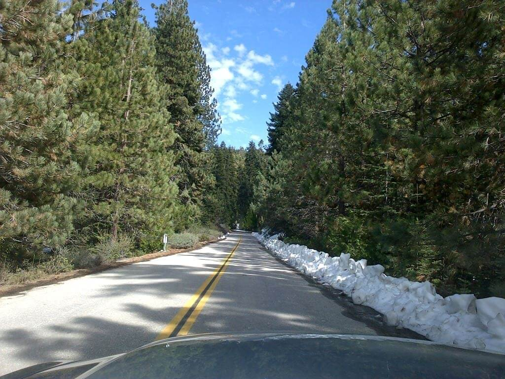 Driving to Sequoia National Forest