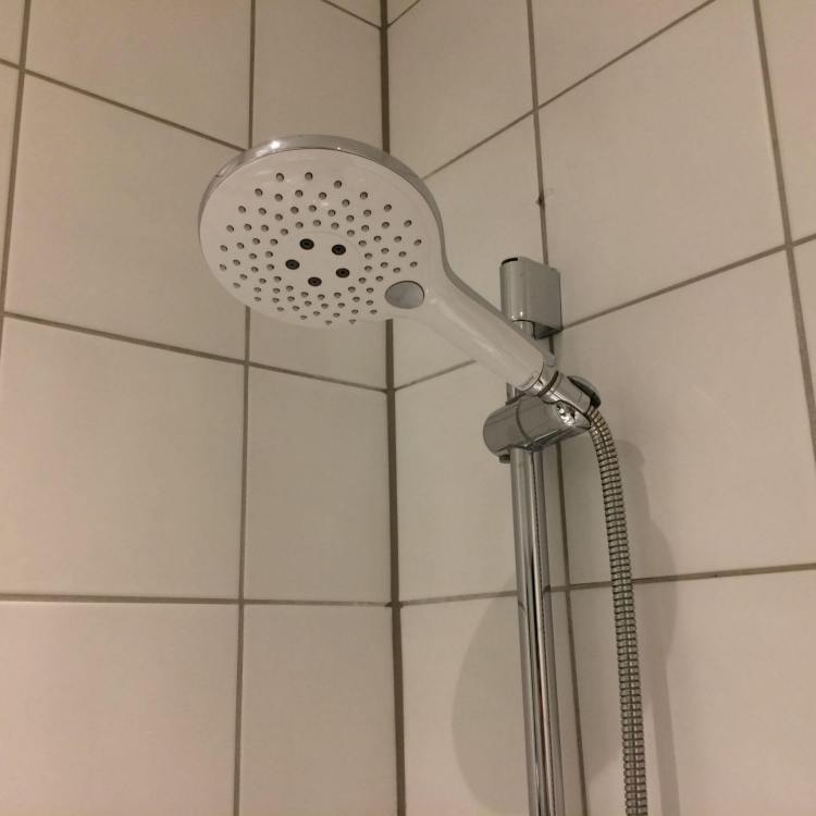The shower head