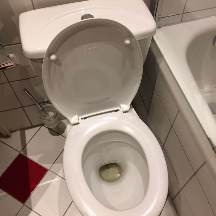 The filthy toilet