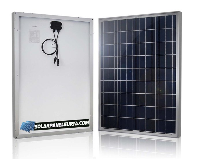 Solar cell Panel Surya 100watt