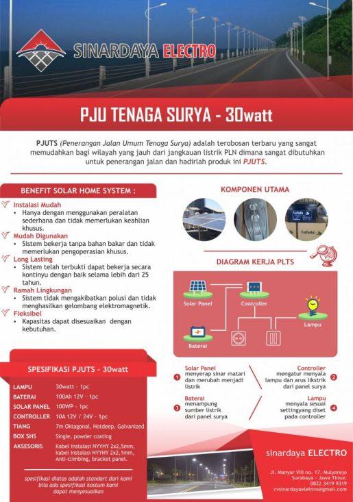 Paket PJU Lampu Jalan Tenaga Surya 30watt