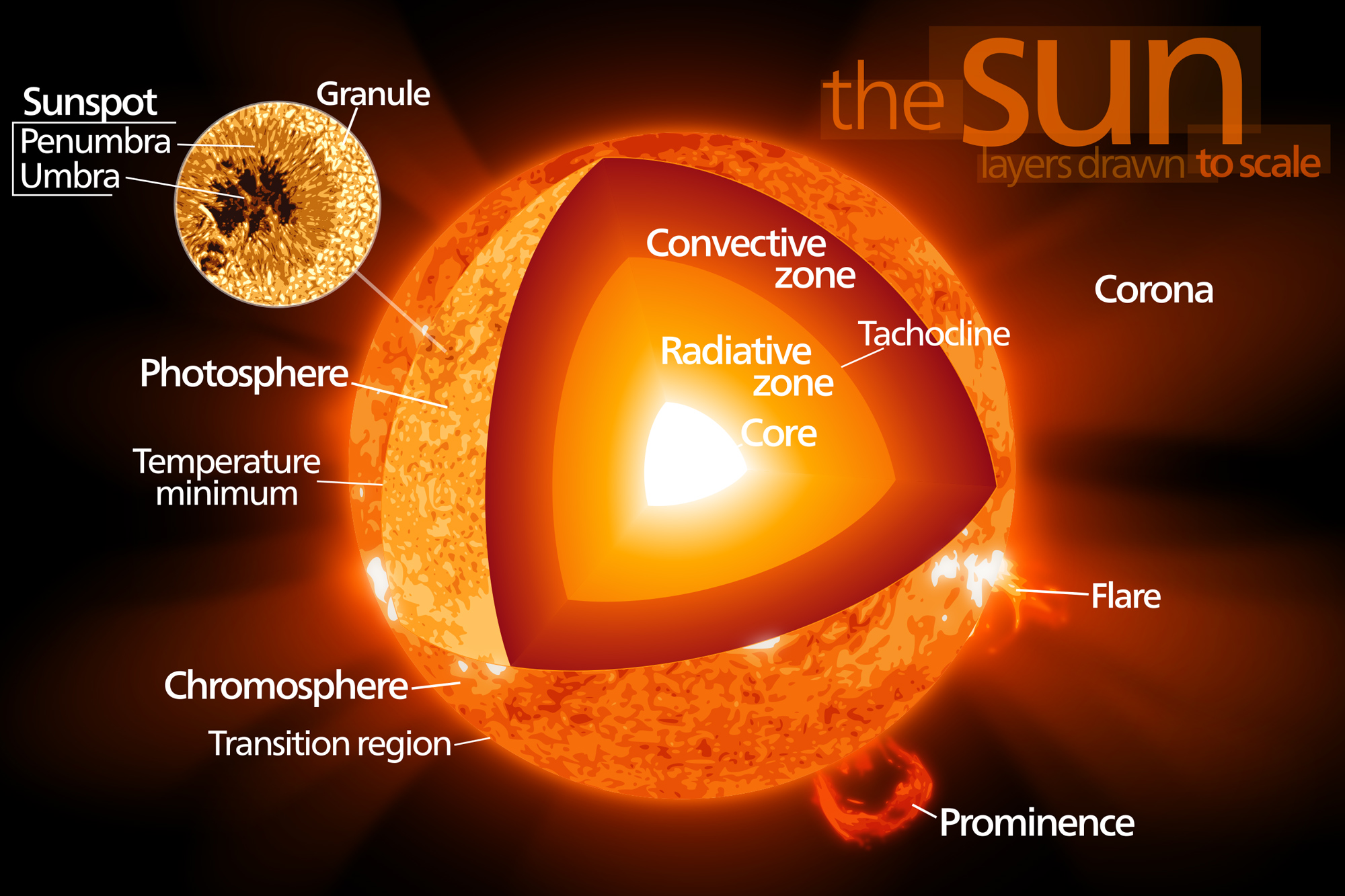 Sun Formation Thermal Nuclear Fusion Structure Future