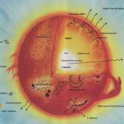 Label The Eye Diagram Answers American Standard Shower Valve Labeled Sun Great Installation Of Wiring Rh Solarviews Com Anatomy