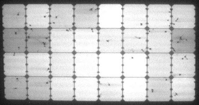 Elektrolumineszenz-Aufnahme des stark belasteten flexiblen Solarmoduls von Solbian