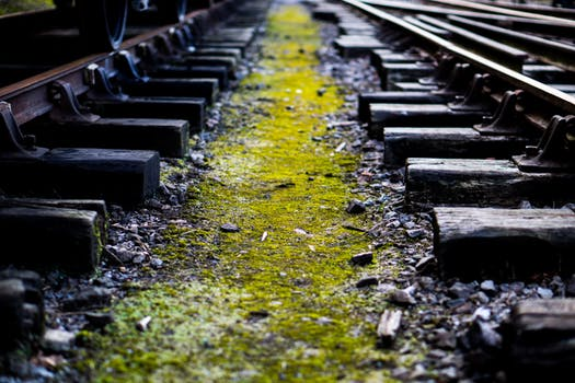 Poem: Old Tracks II