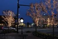 Fairhope Tree Lighting Tonight Downtown   SoldbyBev
