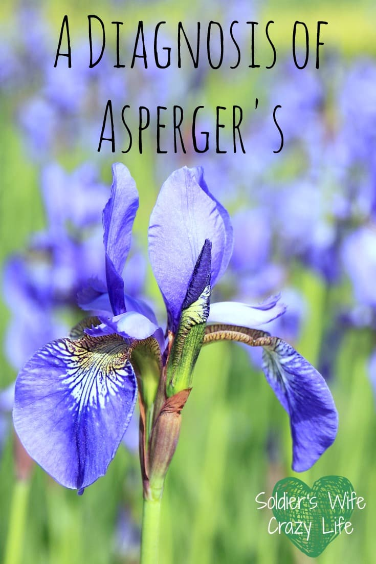 A Diagnosis of Asperger's- Soldier's Wife, Crazy Life