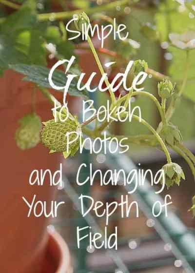 Simple guide to bokeh photos