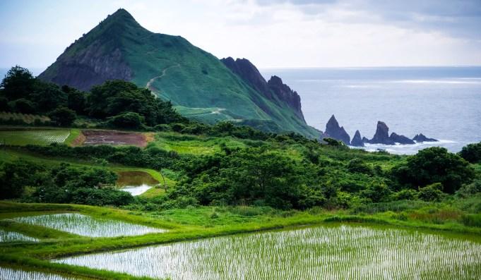 Ile de Sado, Onogame
