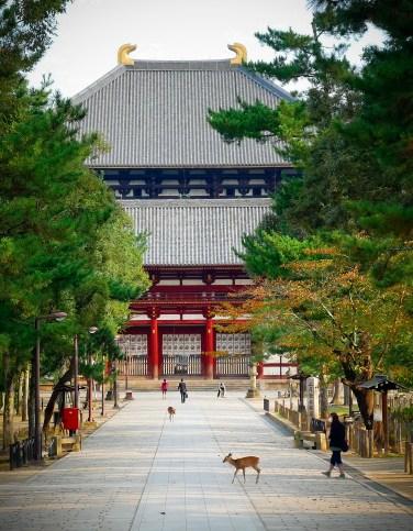 Nara, Todai-ji