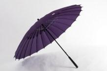 Ville de Fukui - parapluie Janome - CLAIR Paris - bd