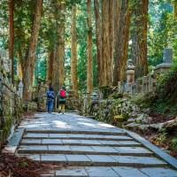 Wakayama: Le Mont Koya.