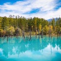 Hokkaido, l'étang bleu