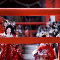 Traditions, Hina Matsuri.
