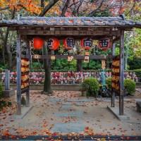 Tokyo, le temple Zojoji en automne.