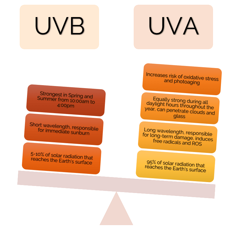 UVA vs UVB comparison