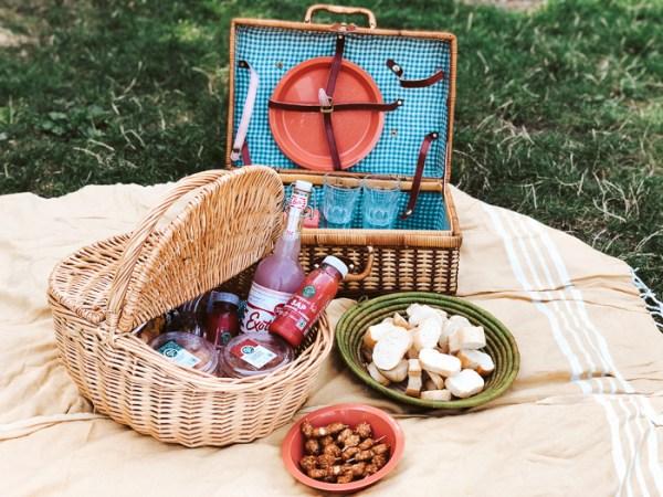 solex picknick langenboom